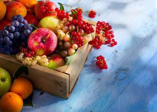 كيف تتخلصين من ذباب الفاكهة والبعوض بشكل سريع