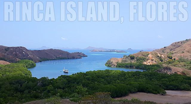 Komodo Island Rinca