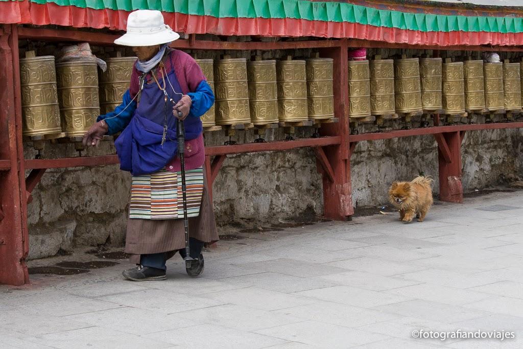 Lingkor lhasa tibet