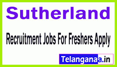 Sutherland Recruitment Jobs For Freshers Apply