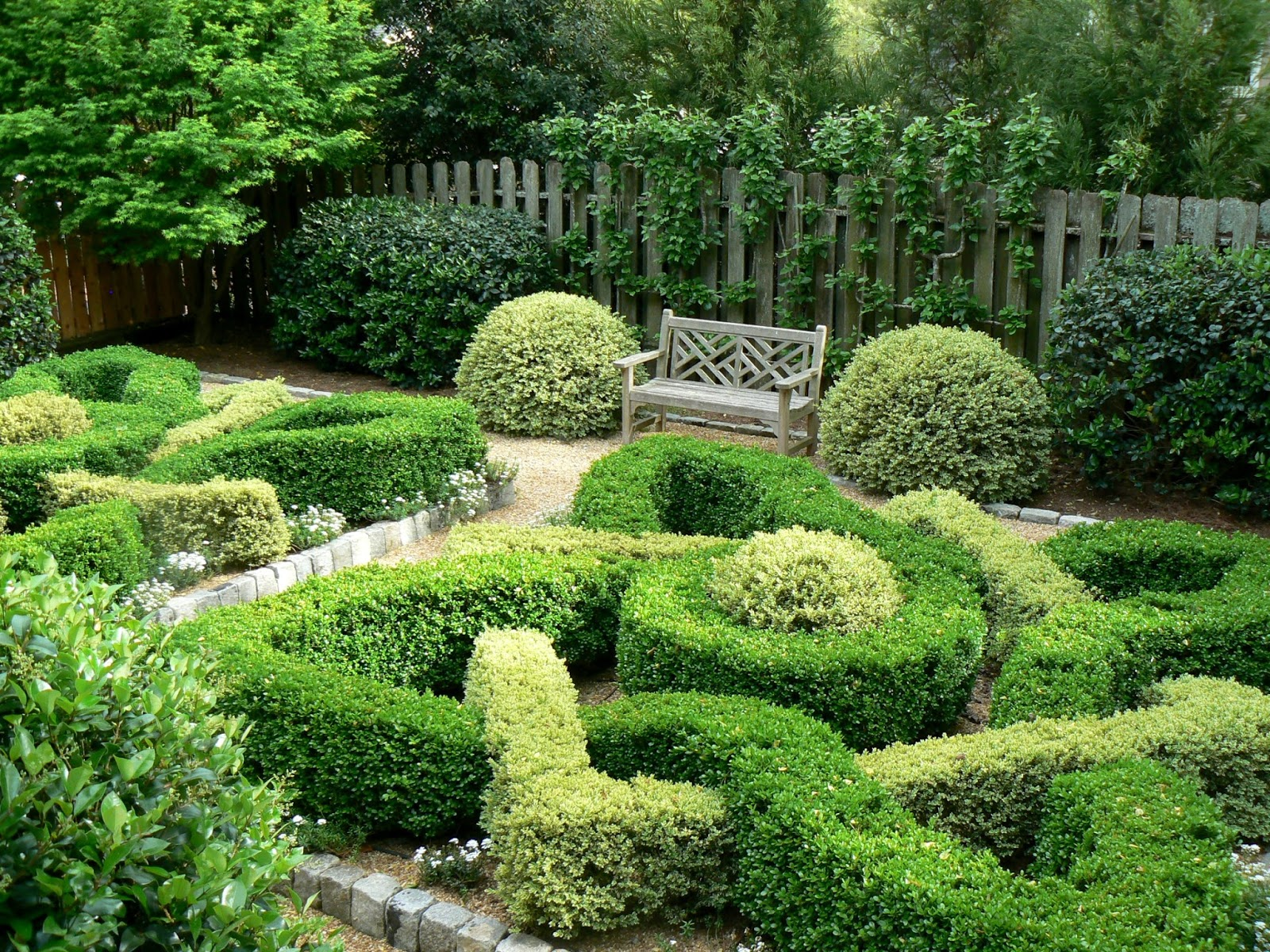 Garden Photo Of The Day 2016