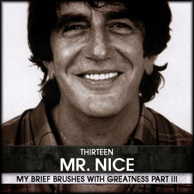 My Brief Brushes With Greatness Part III: 13. Mr. Nice