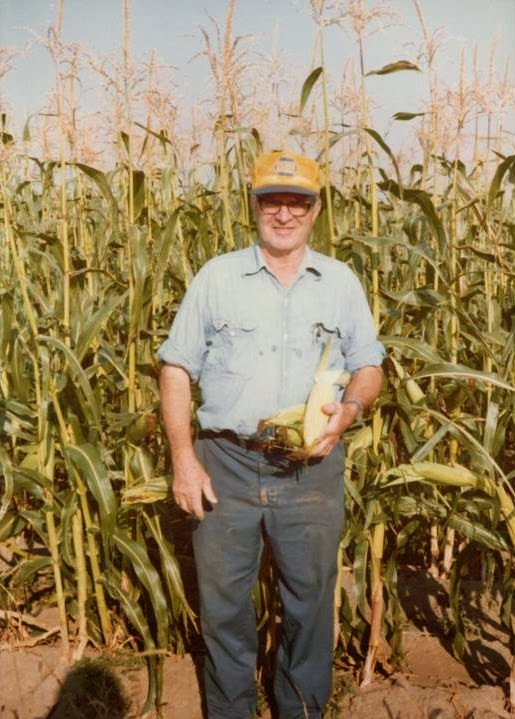 Wiese Acres Sweet Corn Su Se Sh 2 What Does It All Mean