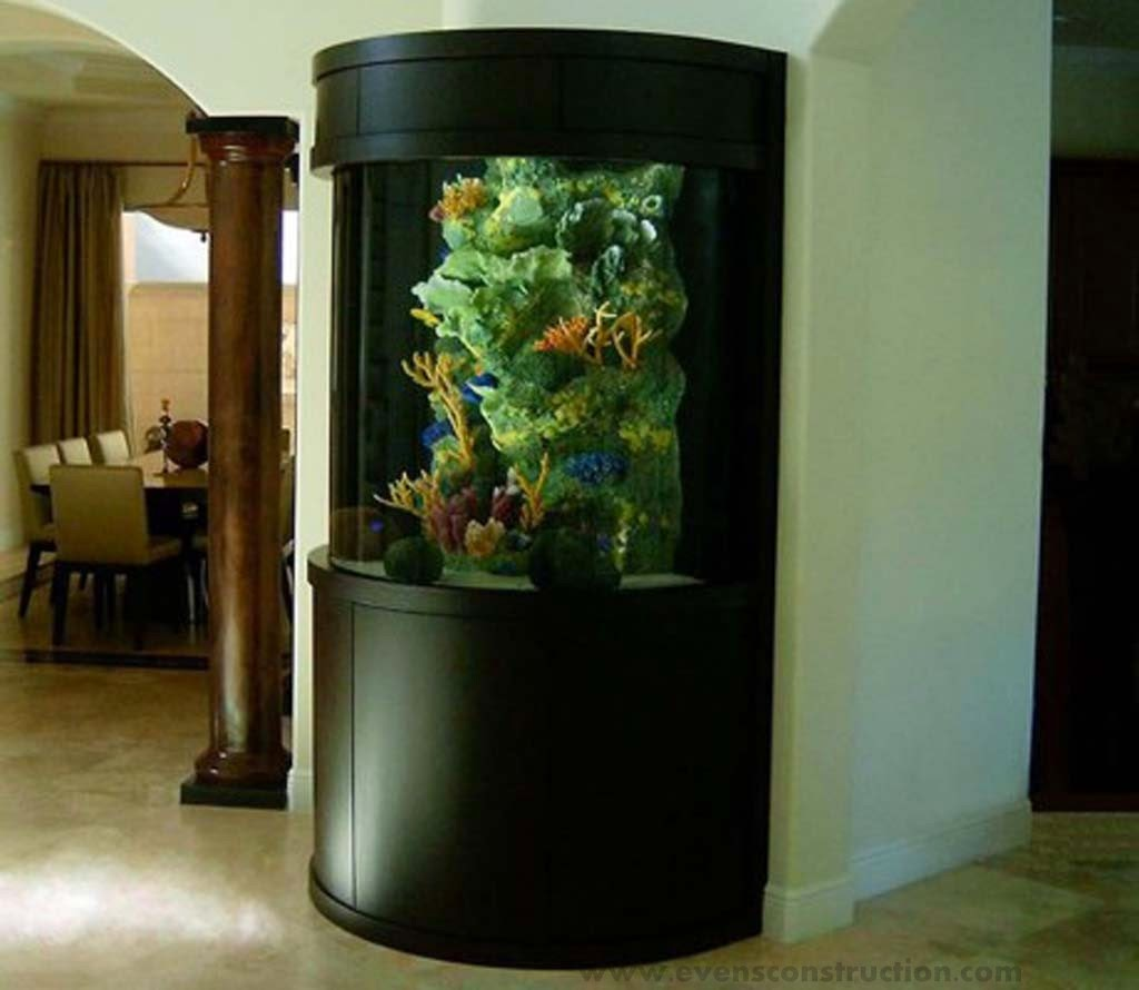 Home Aquarium Design Ideas: Evens Construction Pvt Ltd: Aquarium Designs