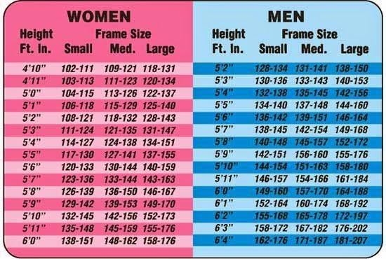 body fat percentage pictures females