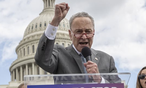 Far Left To Schumer: Uh, Your Stop Kavanaugh Strategy Sucks