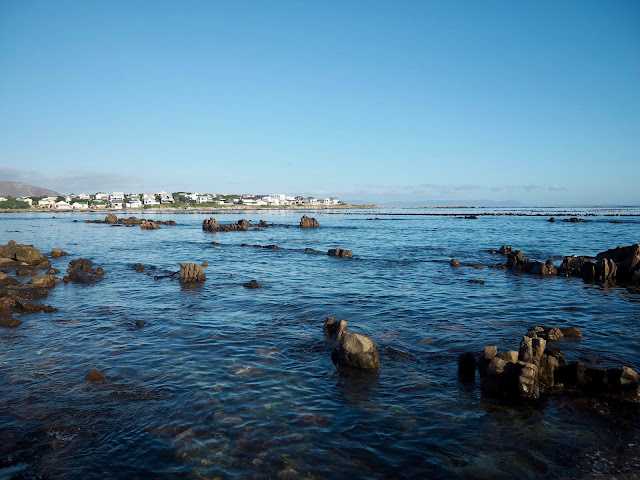 Coast near Hermanus, Western Cape, South Africa