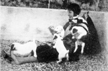 Elizabeth e i suoi cuccioli