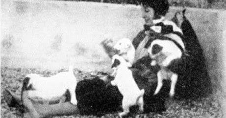 I cani della mia vita di elizabeth von arnim - Il giardino di elizabeth ...