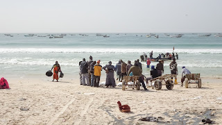 Hundreds of fishing boats