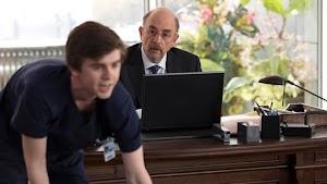 The Good Doctor Primera Temporada [MEGA]