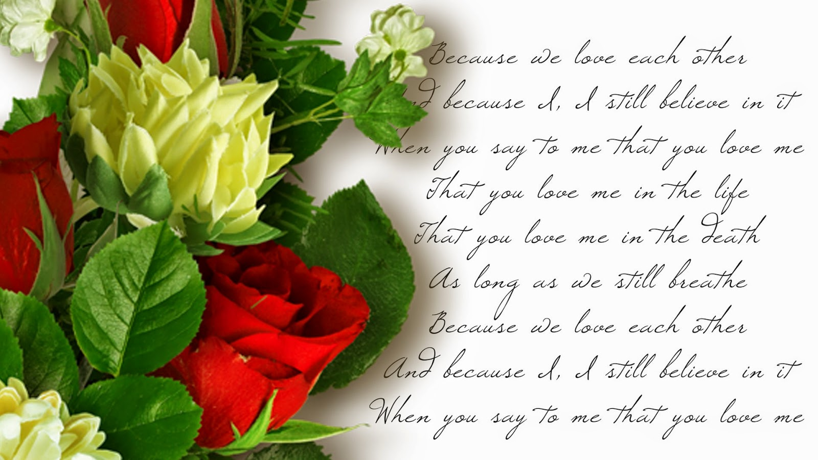 Beautiful Rose Flowers With Love Quotes 4k Pictures 4k Pictures