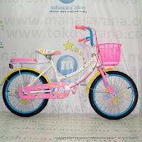 City Bike Erminio 506 18 Inci