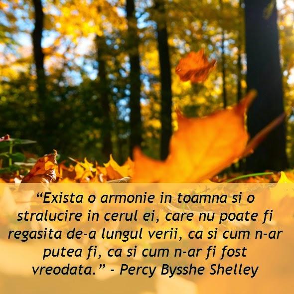 citate despre toamna PARADISUL VERDE: Toamna în imagini și citate   Weekend plăcut  citate despre toamna