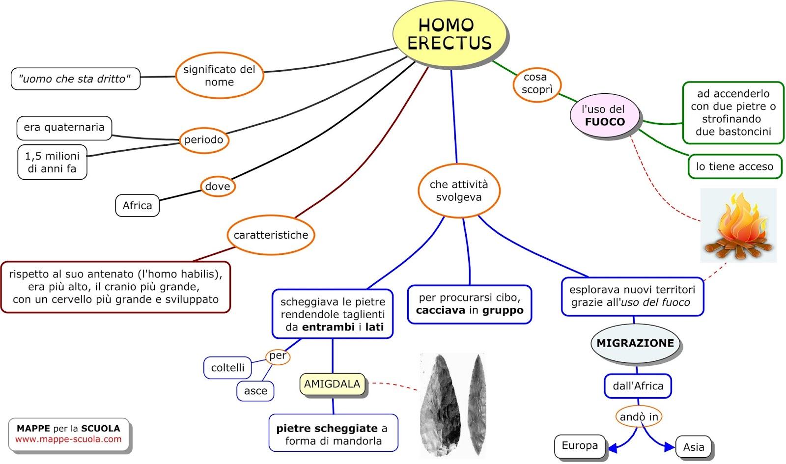 Mappe per la scuola ominide homo erectus - Mappa di ungheria ed europa ...
