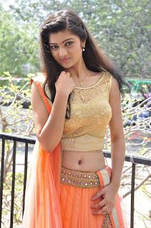 Actress Pallavi Naidu Stills in Half Saree at Lord Shiva Creations New Movie Launch 0009.jpg