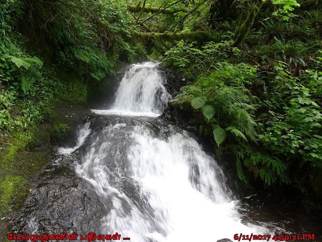 Shepperd's Dell Falls Corbett