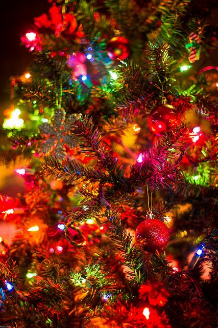 Top christmas lights wallpaper