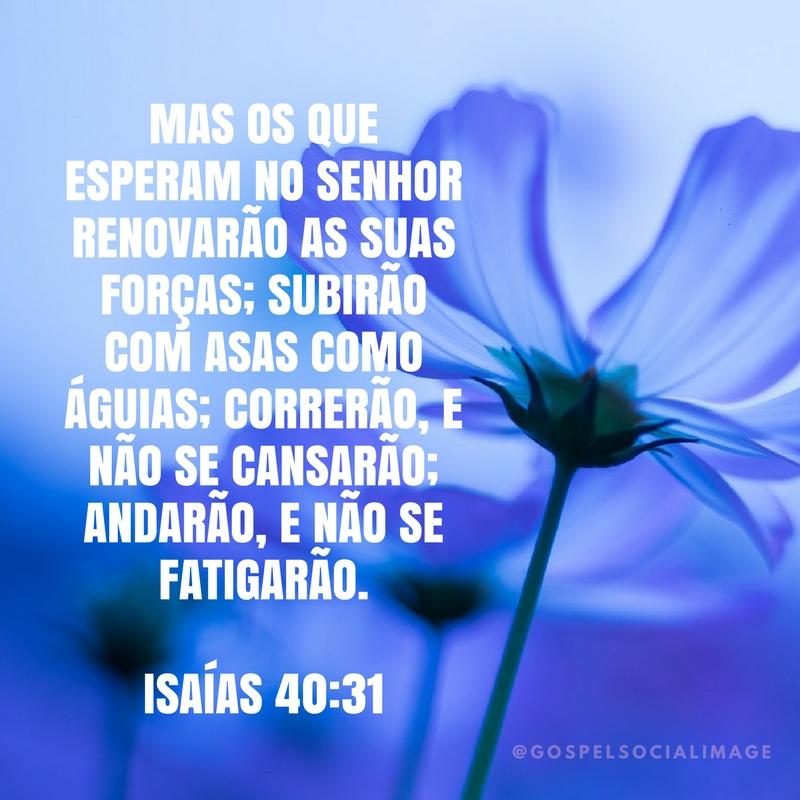 Imagem Linda Mensagem sobre Deus