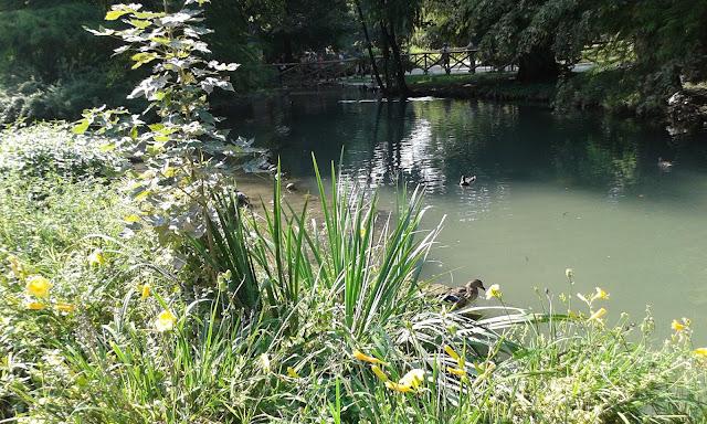 פארק סמפיונה בלב מילאנו