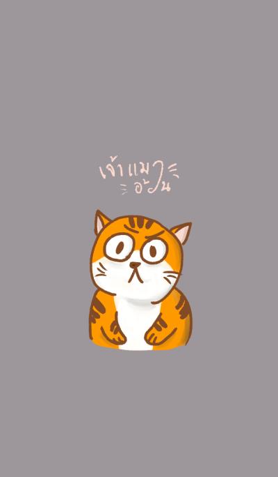 Fat Fat cat