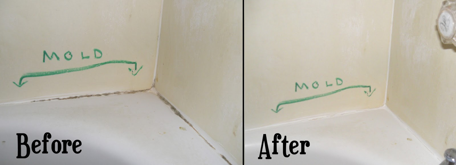 Remove All Stains Com How To Remove Mold From Bathtub Clauk