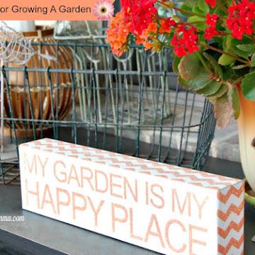 5 Tips for Growing A Garden #1
