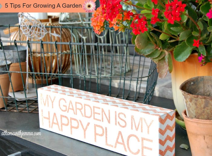 5 Tips for Growing A Garden #1