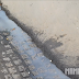 O que falta em Palmeira: Saneamento Básico
