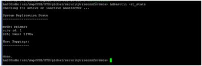SAP HANA System-Replication