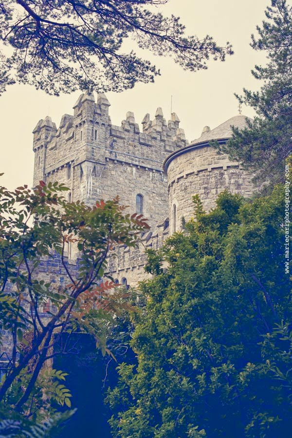Close-up photograph of Glenveagh Castle framed by trees