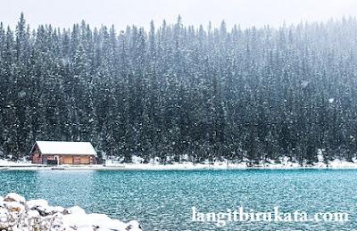 Snowy- Bersalju
