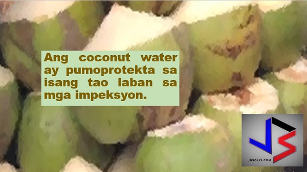 "This article was filed under Health, Health news, Healthy life news, Newshealth, Health blogs, Health benefits, Plants used for medicine and food, and Fruit.  Coconut water, the juice found in a young and green coconut, is a favorite refreshing beverage to many. Not everyone, however, knows that it can also do wonders to one's health.  According to Natural Food Series, coconut water is a refreshing drink that can enhance a person's mental and physical health.  ""Coconut water is indeed a wondrous beverage that isn't only delicious but you can reap health benefits from it as well,"" it stated.  Here are the 13 reasons why you should drink coconut water:  1. Coconut water is good for diabetics.  2. It helps a person to lose weight.  3. It is beneficial for a person's digestion.  4. Coconut water treats high levels of blood pressure.  5. It is good for cardiovascular health.  6. It maintains kidney health.  7. It cures headache and migraine.   8. Coconut water is good for expectant mothers. The magical water is nourishing for the fetus.    In addition, a single serving is enough for an expectant mother as it contains adequate amounts of magnesium, potassium, amino acid, and vitamin C and B complex. It is also a safe source to obtain fiber and few calories that will help maintain body weight during pregnancy.     9. Experts said consuming fresh coconut water can help in cancer treatment.  10. It improves skin condition.    11. It treats damaged hair.  12. Coconut water is good for hydration.    13. Being an antimicrobial, coconut water has potential to destroy positive and negative gram bacteria preventing you from several infections.    Find out more about what coconut water can do to your health:"