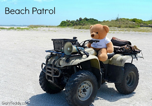 Giant Teddy Bear Beach Patrol...such a rough job!