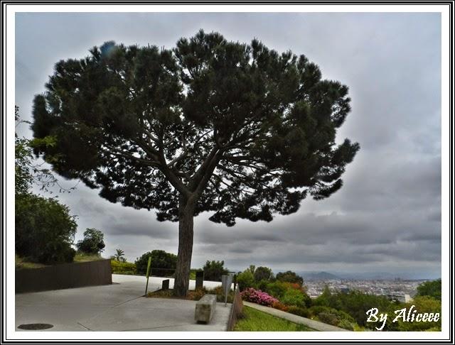 gradina-botanica-barcelona