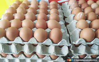 3 syarikat didakwa catut harga telur ayam