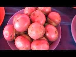 BORNEO FRUITS AND FOOD: Borneo fruits-The Engkala Fruit of Sarawak