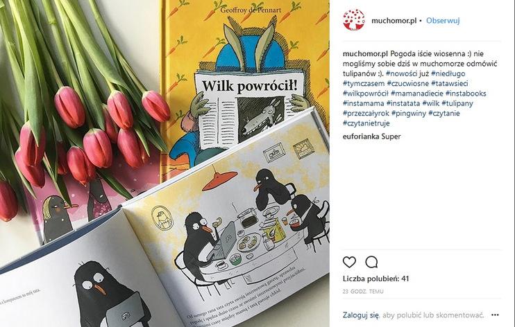 https://www.instagram.com/muchomor.pl/