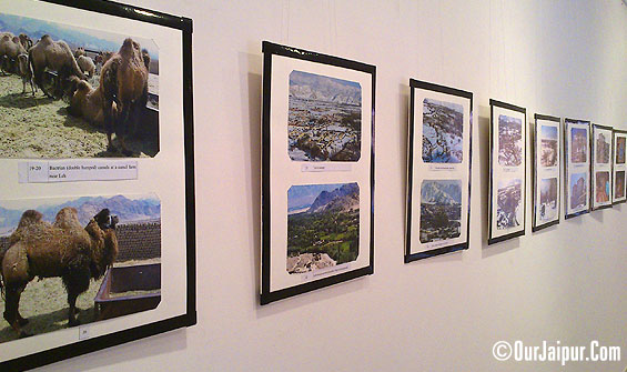 """Glimpses of Ladakh"" Photo Exhibition."