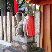 人文研究見聞録:信太森葛葉稲荷神社(葛葉稲荷) [大阪府]