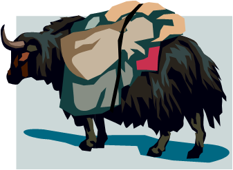 Amazing facts yaks, Bos grunniens, Yaks Facts