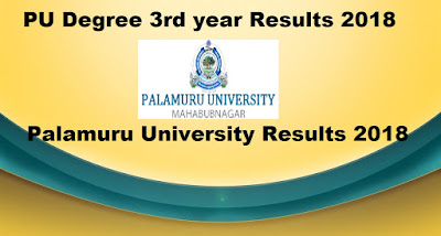 Manabadi PU Degree 3rd year Results 2018, Palamuru University final year Results 2018 Schools9