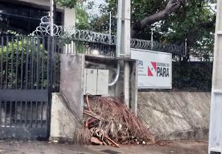 Caos na Sespa em Santarém: com viagens suspensas, municípios da região ficam sem assistência