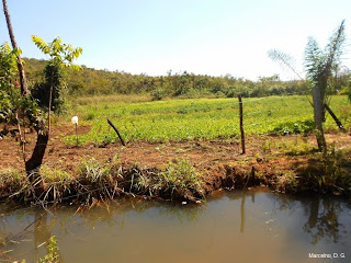 área-de-preservação-permanente-degradada