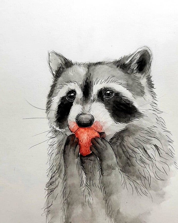 07-Raccoon-with-a-red-Strawberry-Kleevia-Animal-Art-www-designstack-co