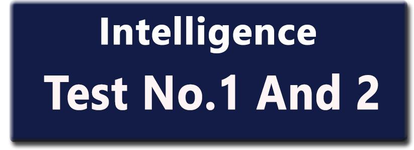 Intelligence Test Book
