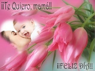 Frases Día De La Madre: Te Quiero Mama