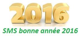 Que 2016 soit meilleur que 2015 ! Bonne Année 2016