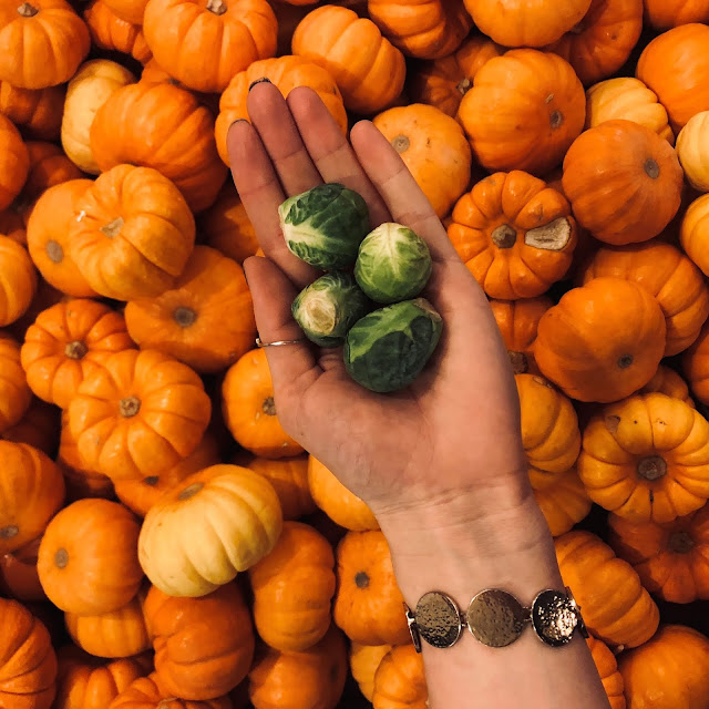 4 Vegetables That are In Season Right Now That Aren't Pumpkins + Recipes!