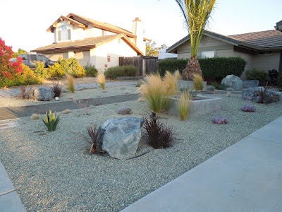 Drought-Friendly Landscaping in Paso Robles, © B. Radisavljevic